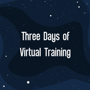 IBIS 2021 Three Days of Virtual Training