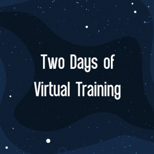 IBIS 2021 Two Days of Virtual Training