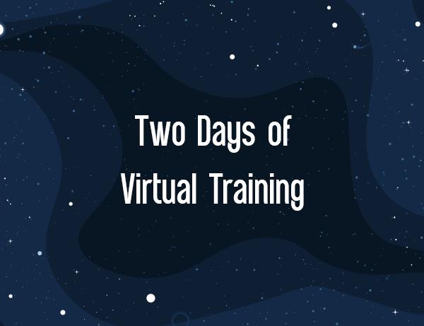 IBIS 2021 Two Days of Virtual Training