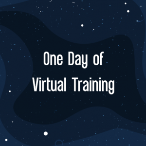 IBIS 2021 One day of Virtual Training
